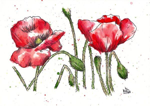 dibujo amapolas de natadpb ilustración